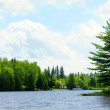 Panorama of a northern lake — Stock Photo