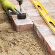 Setting paver — Stock Photo