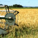 Harvester and barley — Stock Photo #3642866