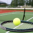 Tennis racket and ball on court — Stockfoto