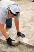 Paver stone landscaping — Photo