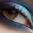 Elegance close-up of beautiful female eye with marine colors eyeshadow. Macro shot of beautiful woman's face part with makeup. Cosmetics, beauty and make-up — Stock Photo