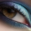 Elegance close-up of beautiful female eye with marine colors eyeshadow. Macro shot of beautiful woman's face part with makeup. Cosmetics, beauty and make-up — Stock Photo #12252215