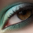 Elegance close-up of female eye with mint color eyeshadow. Macro shot of face part — Foto de Stock