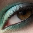 Elegance close-up of female eye with mint color eyeshadow. Macro shot of face part — 图库照片