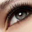 Woman beautiful eye with naturally long eyelashes. Macro shot. Wellness and spa, health and cosmetics. Natural make-up with black mascara on lashes. Long naturel eyelashes — Lizenzfreies Foto