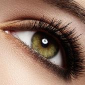 Kvinna vackra ögon med naturligt långa ögonfransar. makro skott. wellness och spa, hälsa och kosmetika. naturlig make-up med svart mascara på fransarna. lång naturel ögonfransar — Stockfoto