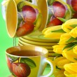 Tecups and yellow tulips — ストック写真 #22236725