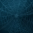Spider Web — Stock Photo #43135149
