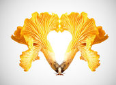 Creative food - Chanterelles — Stock Photo