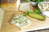 Domuz yağı ile ekmek dilimi — Stok fotoğraf
