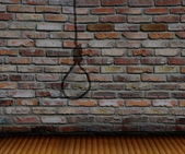 brick wall  and shadow gallows  — Stock Photo
