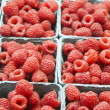 Containers of Raspberries — Stock Photo #13821392
