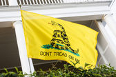 Dont Tread On Me Flag — Stock Photo
