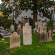 Tombstones Under MagnoliTree — Stockfoto #19542721