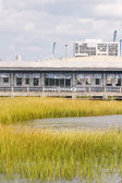 Saltwater Marsh by Restaurant and Bar — Stock Photo