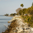 Stock Photo: SeaWall Toward Walkways and Palm Tree