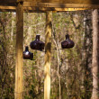 Birdhouses Hanging From Treated Lumber — Stock Photo