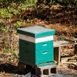Stock Photo: Wood Beehouse in Forest