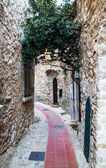 Alley in Eze — Stock Photo