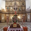 Stock Photo: Inside Kotor Church