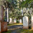 Stock Photo: Nineteenth Century Tombstones