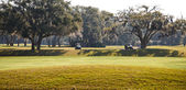 Two Golf Carts on Southern Course — Stock Photo