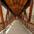Stock Photo: Wood Covered Bridge of Old Timbers