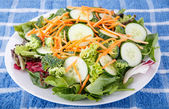 Fresh Garden Salad with Cucumbers Broccoli and Carrots — Stock Photo