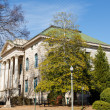Columns on Old Stone Courthouse by Trees — Stock Photo #28910125