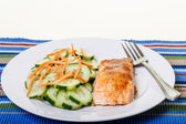 Broiled Salmon with Cucumbers and Carrots — Stock Photo
