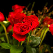 Stock Photo: Bouquet of Red Roses on Black Background
