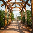 brick walkway through rose arbor toward fountain — Stock Photo