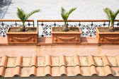 Clay Planters over Tile Roof — Stock Photo