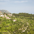 Stock Photo: Mansions on Eze Hillside