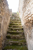 Old Moss Covered Steps in Pompeii — Stock Photo