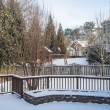 Snow in Back Yards of Homes — Stock Photo #40003387