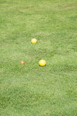 Yellow Bocce Balls on a Green Lawn — Stock Photo