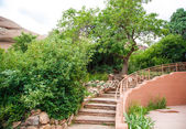 Stone Steps Curving by Green Trees — Stock Photo