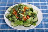 Ensalada de espinacas con pepino y brócoli — Foto de Stock