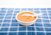 White Spoon in Bowl of Tortilla Soup — Stock Photo