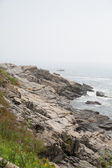 Rocky Maine Shore — Foto Stock