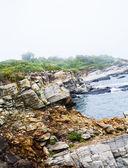 Rough Rocks on Coast — Stock Photo