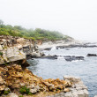 Rocy Coast Near Portland Maine — Stock Photo #49474673