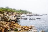 Rocy kust in de buurt van portland maine — Stockfoto