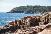 Rocks in Acadia Forest — Stock Photo