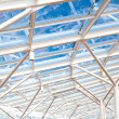 Glass Atrium Roof Supported by White Steel — Stock Photo #50242033