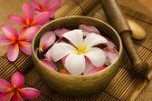 Retiro de spa tropical — Foto Stock