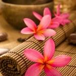 Balinese Spa — Stock Photo #12252939