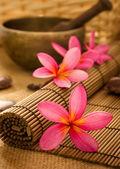 巴厘岛 spa — 图库照片